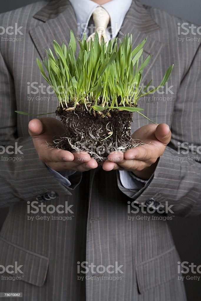 Empresário segurando uma planta foto de stock royalty-free