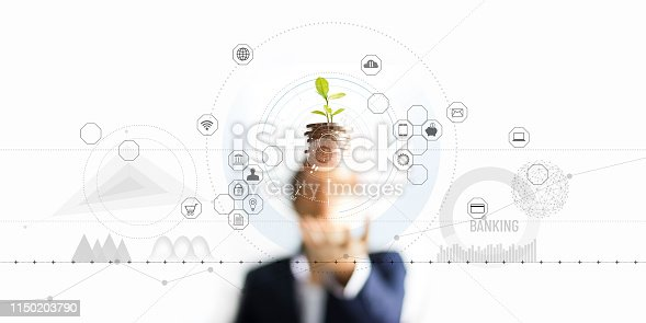 istock Businessman holding a tree sprout growing on coins, abstract growth investing. Finance and icon customer, banking network connection on interface, digital marketing, investment growth and business technology concept 1150203790