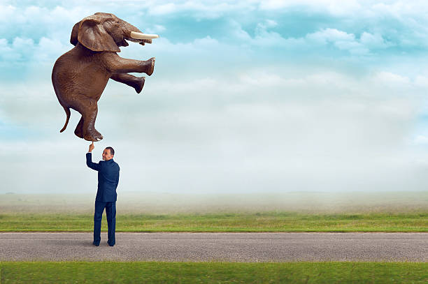 businessman holding an elephant with one finger - effortless stock photos and pictures