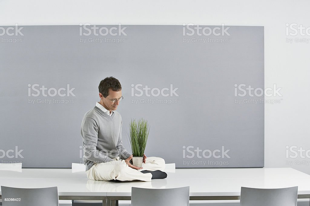 Businessman holding plant sitting on conference table royaltyfri bildbanksbilder