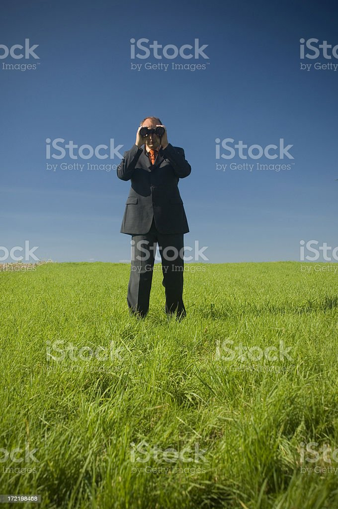 Businessman in a field royalty-free stock photo