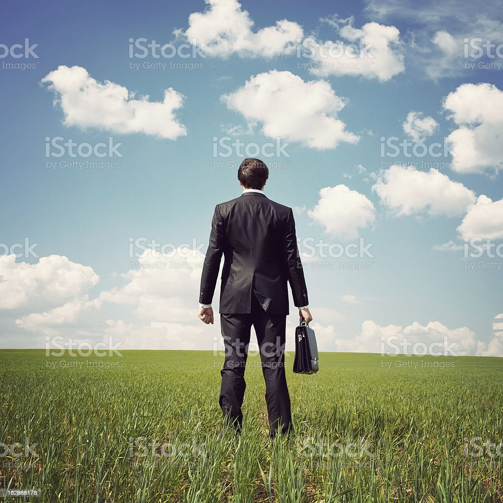 Businessman in a field with briefcase royalty-free stock photo