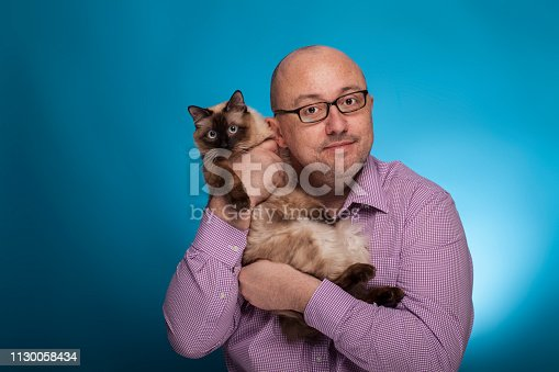 istock A businessman in a piked shirt holds  a birman cat in the hand,  on the blue background. 1130058434