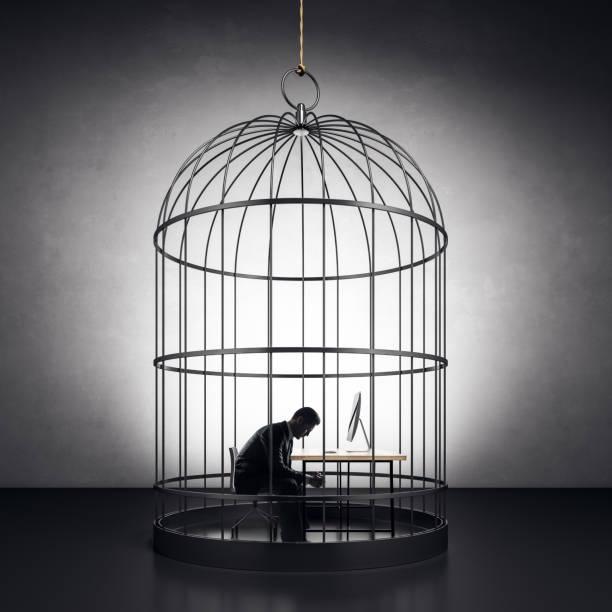 Kaufmann im Vogelkäfig – Foto