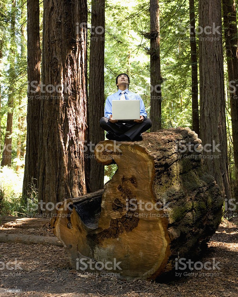 Businessman in forest, sitting on huge tree stump, using laptop royalty-free stock photo