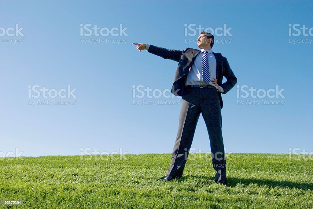 Businessman in suit royalty-free stock photo