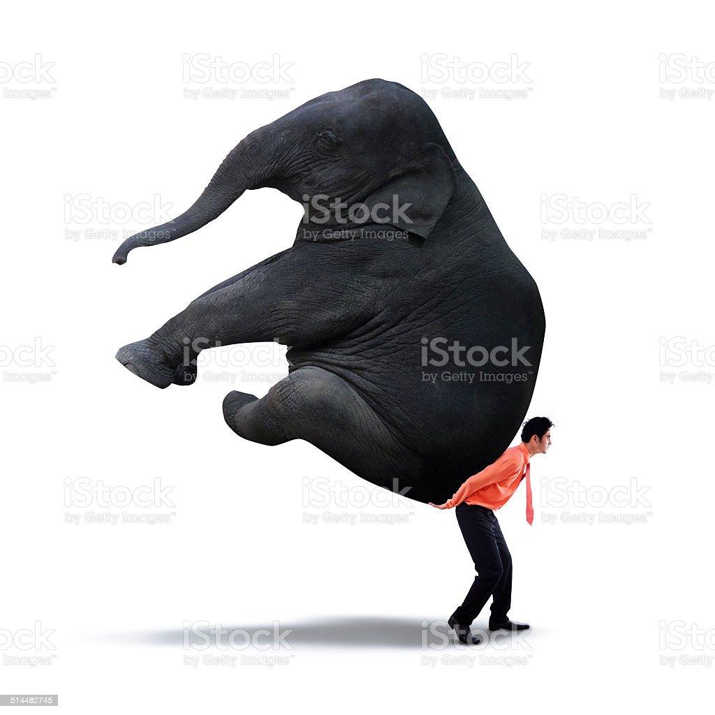 Businessman lifting heavy elephant stock photo
