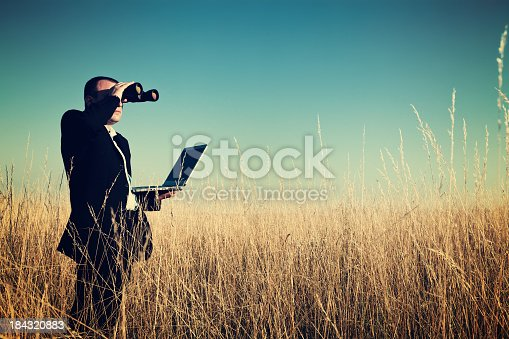 istock Businessman looking field for investment. 184320883
