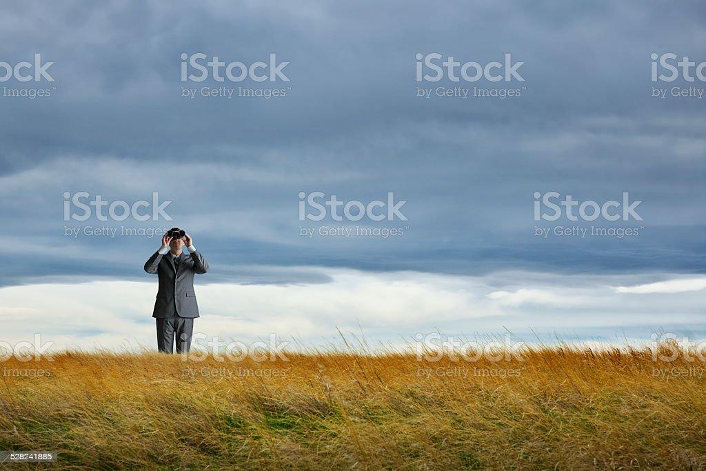 Businessman Looking Through Binoculars In A Field stock photo