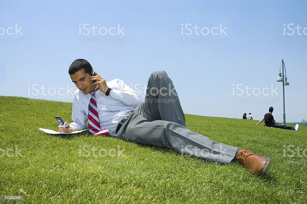 businessman on the grass royalty-free stock photo