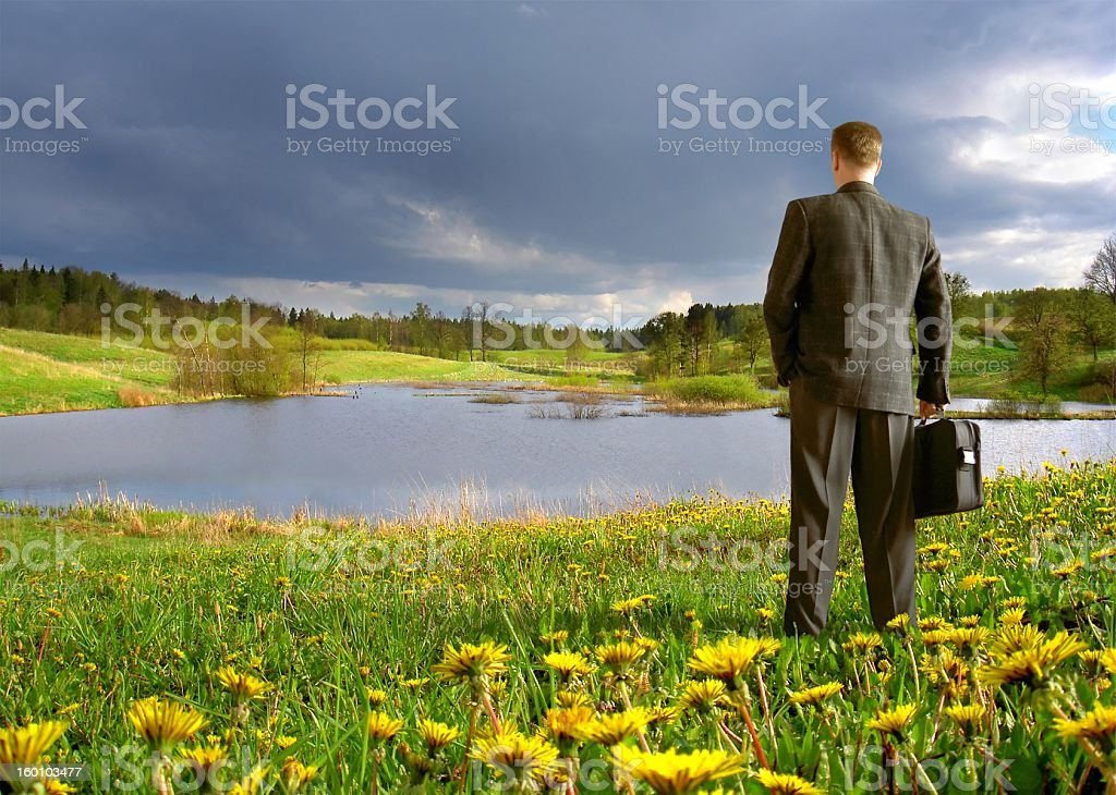 businessman on the meadow royalty-free stock photo