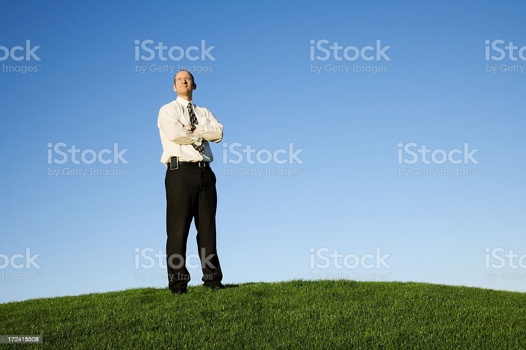 Businessman on Top of The World royalty-free stock photo