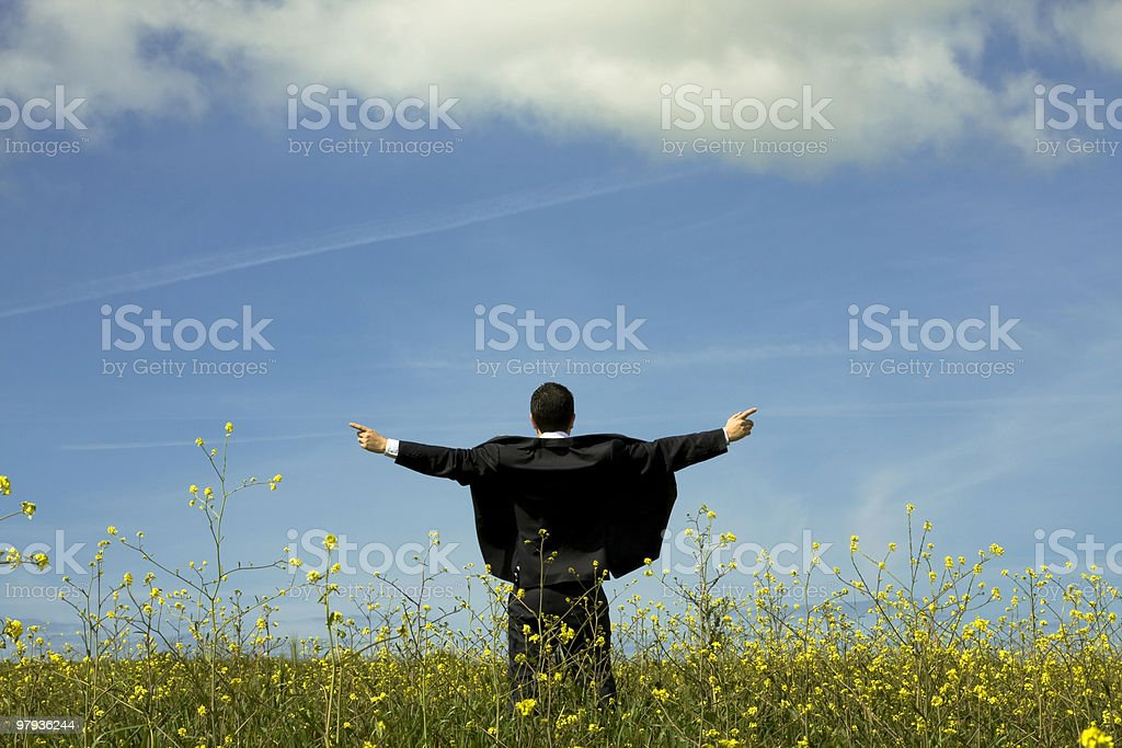 Businessman outstretched on a field royalty-free stock photo