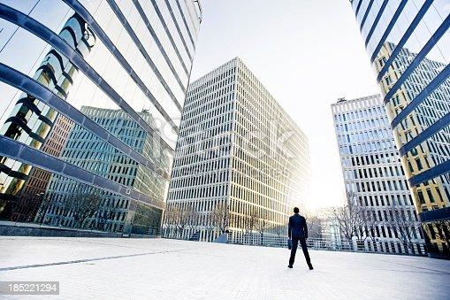 istock Businessman 185221294