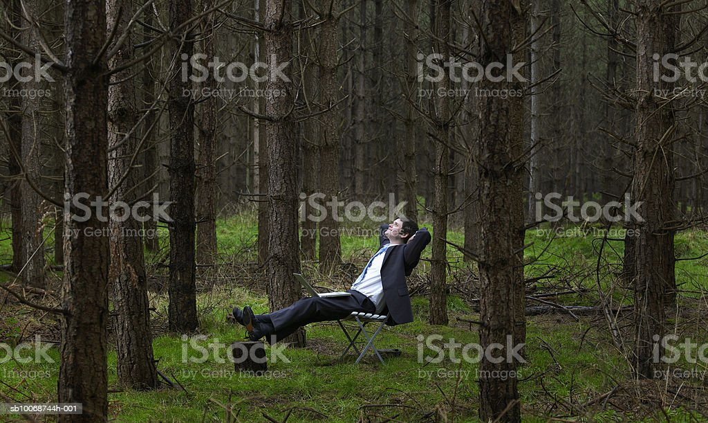 Businessman sitting in forest with laptop, side view royalty free stockfoto