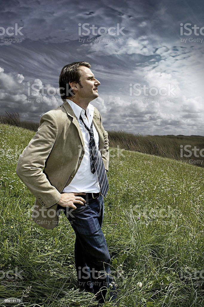 businessman standing in a meadow looking into the future royalty-free stock photo