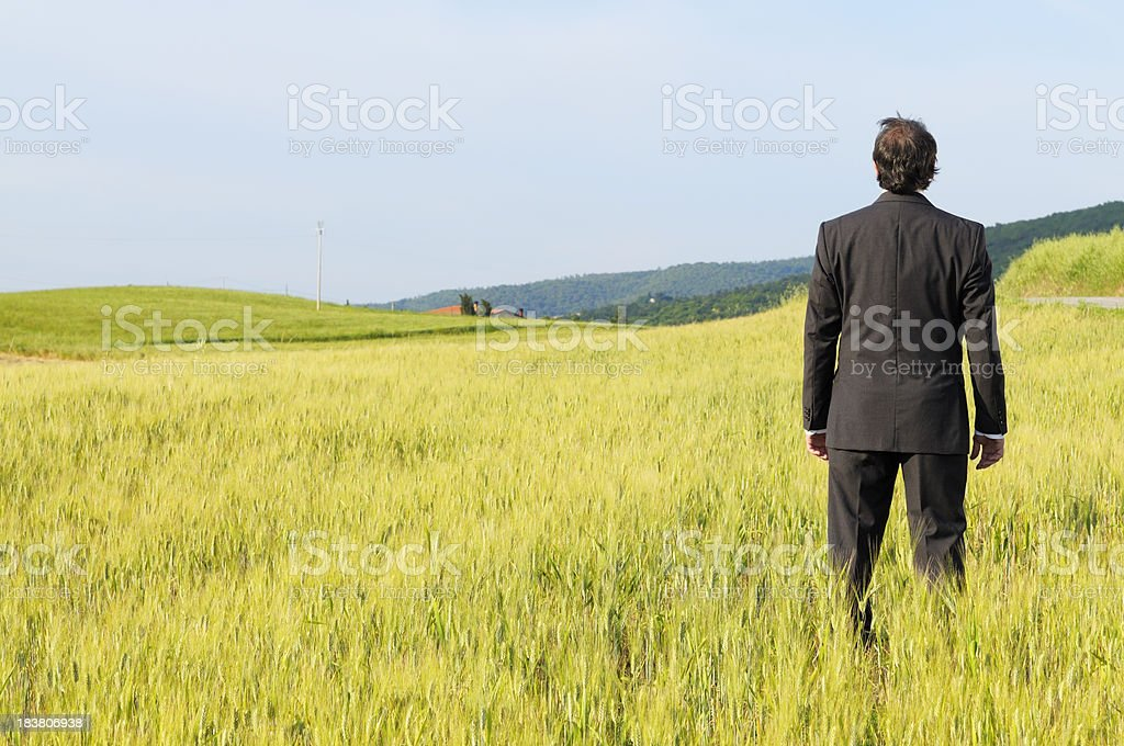 Businessman Standing in the Countryside.Copy Space stock photo