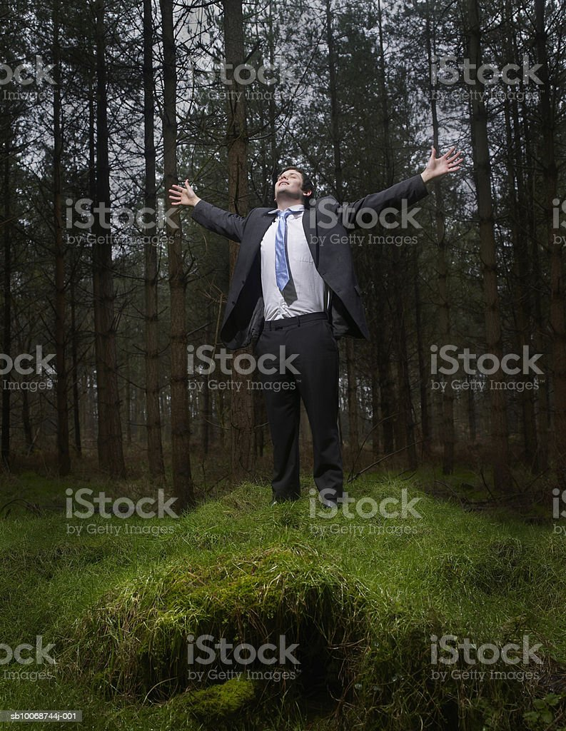 Businessman standing with arms out in forest foto de stock libre de derechos