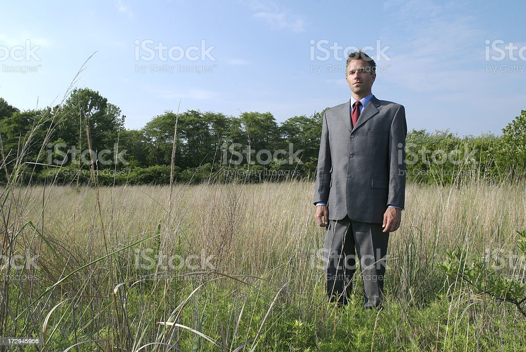 Businessman Stands in Grassy Meadow royalty-free stock photo