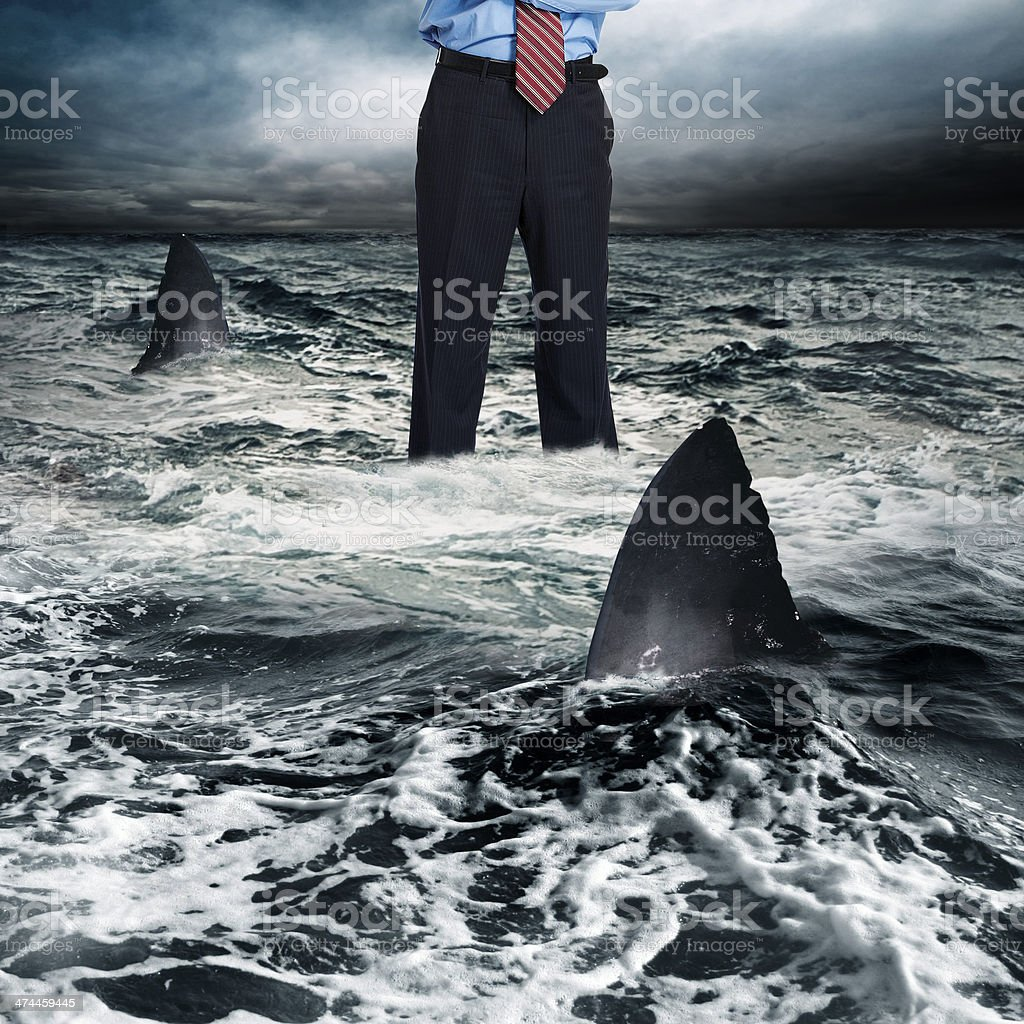 Businessman surrounded by shark stock photo