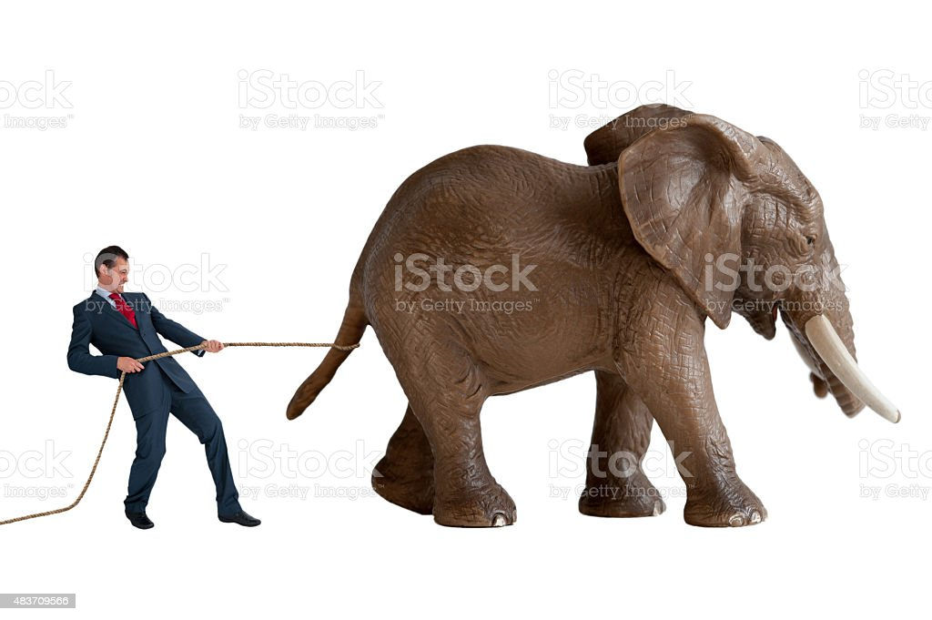 businessman trying to restrain an elephant stock photo