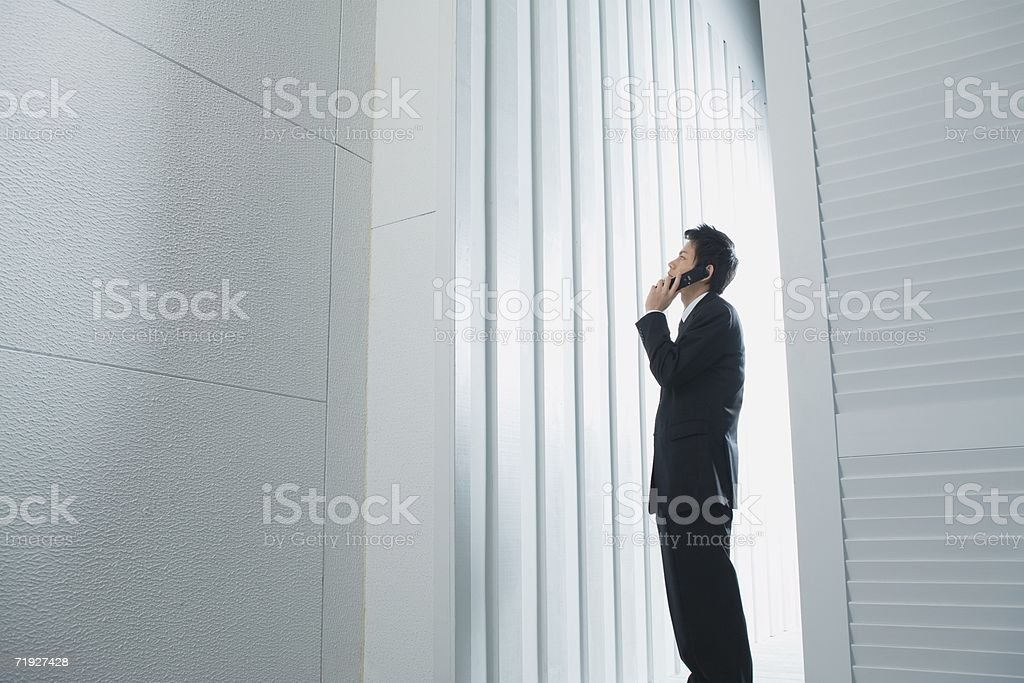 Businessman using a cellular telephone royalty-free stock photo