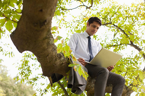 Businessman using laptop on tree branch picture id169878836?b=1&k=6&m=169878836&s=612x612&w=0&h=x54wgbp562no2ms t bvaiktl3 rrbwv1adg7sei8lo=