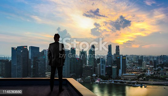 Businessman watching the city on the rooftop of skyscraper