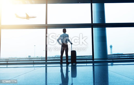 509630674 istock photo Businessman with luggage waiting in the airport 529667774