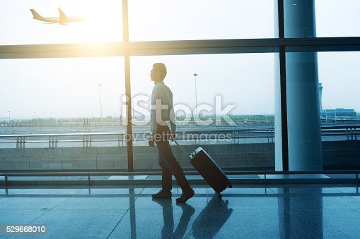509630674 istock photo Businessman with luggage waiting in the airport 529668010