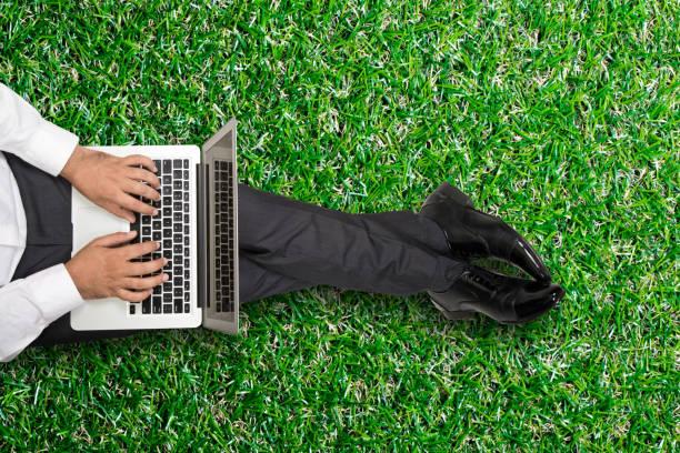 geschäftsmann arbeiten am laptop  - garden types stock-fotos und bilder