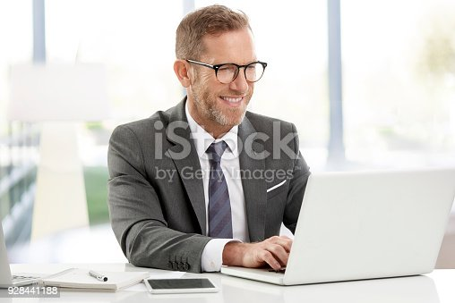 istock Businessman working on laptops at the office 928441188