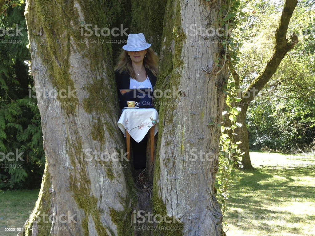 Businesswoman at desk using laptop inside a tree stock photo