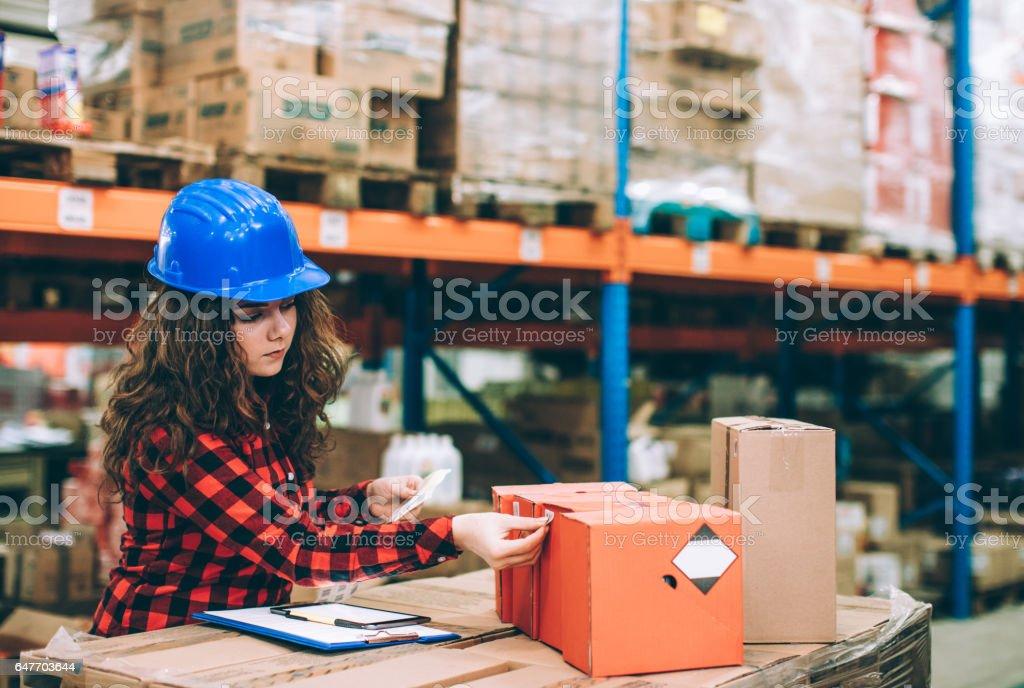 Geschäftsfrau im Lager Bestand überprüfen – Foto