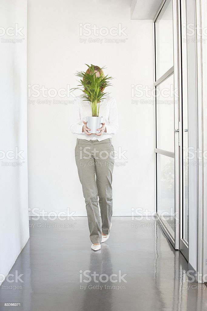 Businesswoman carrying plant in office royalty-free stock photo