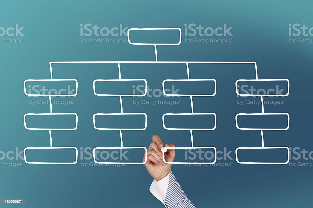 Businesswoman drawing an organization chart stock photo