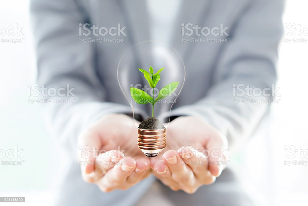 Businesswoman hold Light Bulb with soil and green plant – Foto