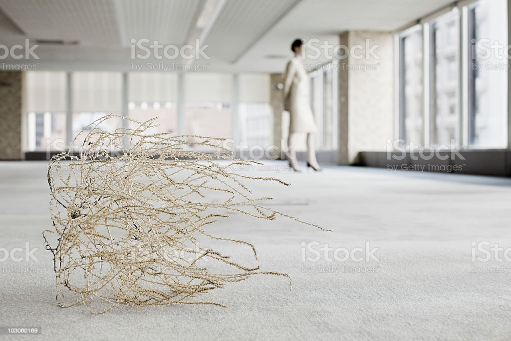 Businesswoman in office with tumbleweed stock photo