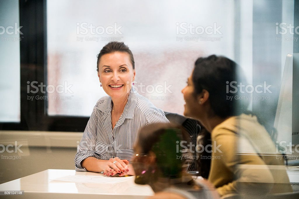 Businesswoman leading a meeting. stock photo