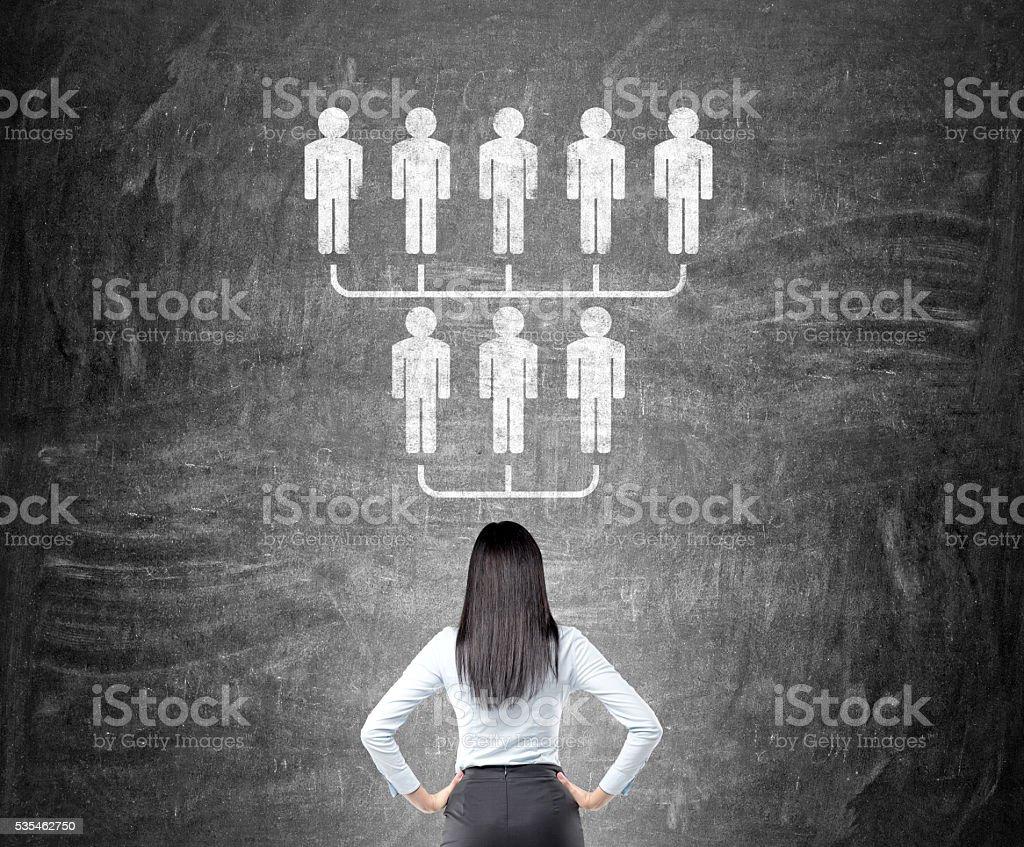 Geschäftsfrau schaut an Hierarchie Skizze – Foto