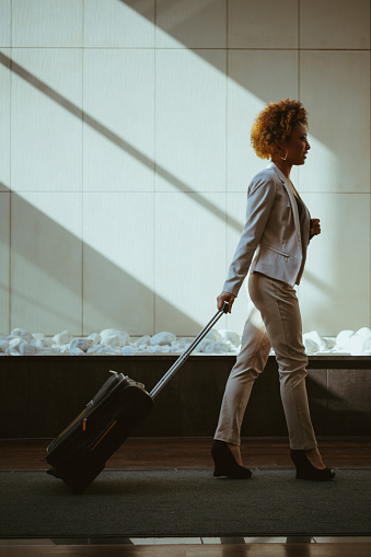 Businesswoman On Business Travel Stock Photo - Download Image Now