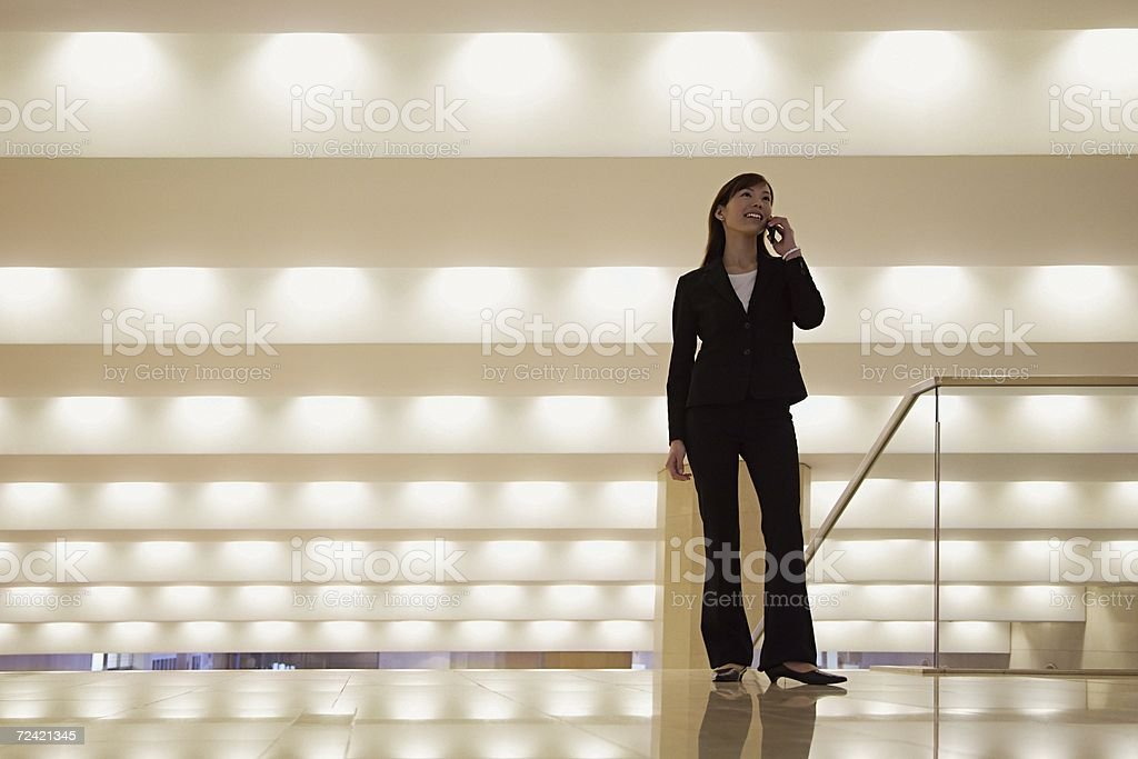 Businesswoman on the telephone royalty-free stock photo