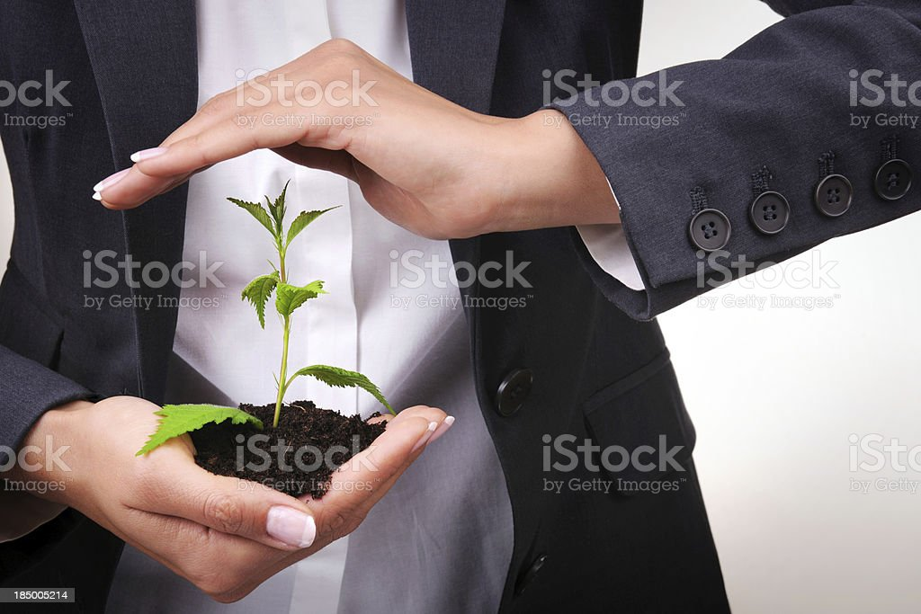Businesswoman protecting a young plant royalty-free stock photo