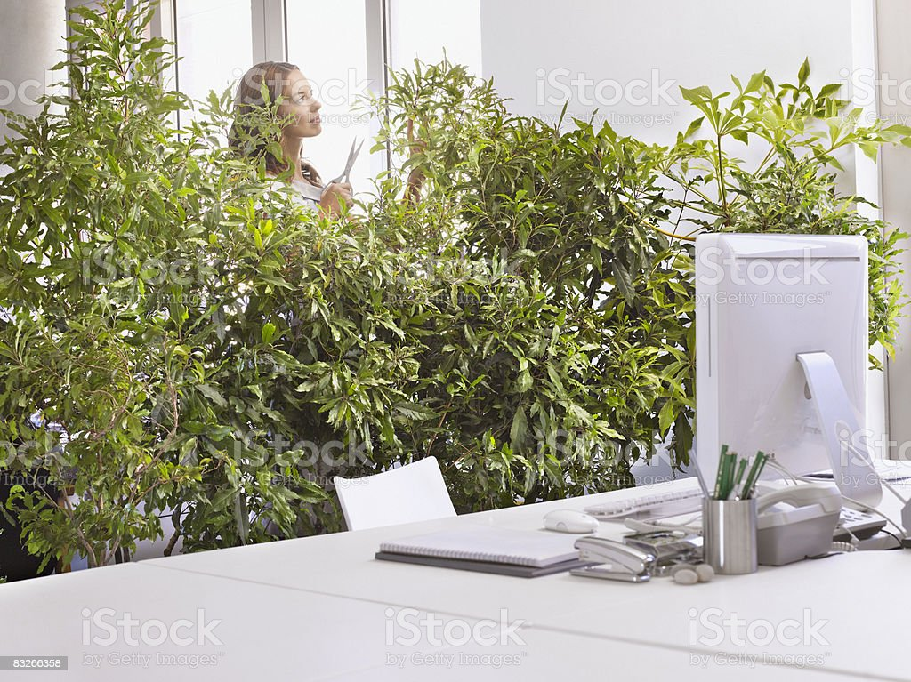 Businesswoman pruning overgrown plants in office royalty-free stock photo