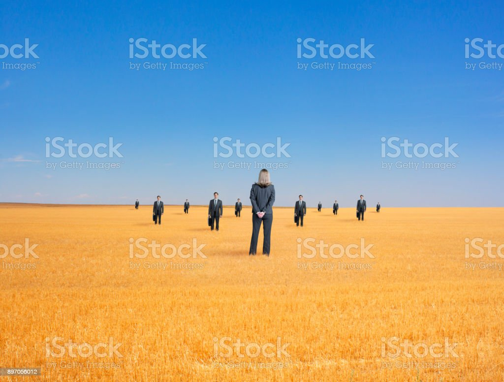 Businesswoman Standing In Field Encounters Group Of Businessmen stock photo
