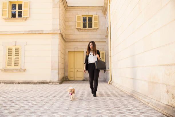 Businesswoman walking with dog picture id871774754?b=1&k=6&m=871774754&s=612x612&w=0&h=mwmw1epncuaiqimukak3my5xvqbdarronjdelj8aivq=
