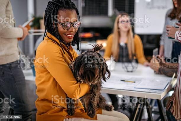 Businesswoman with pet dog at office picture id1201028867?b=1&k=6&m=1201028867&s=612x612&h=4uj57ir6ycmcsjqkvic86fnbxvq4xapapktzn9uxo3m=