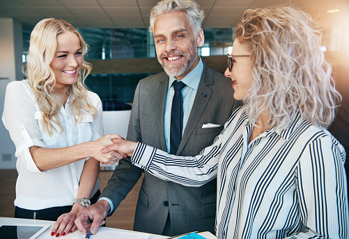 690855708 istock photo Businesswomen shaking hands during meeting in office 690855760