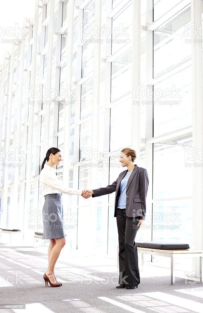 Businesswomen Shaking Hands royalty-free stock photo