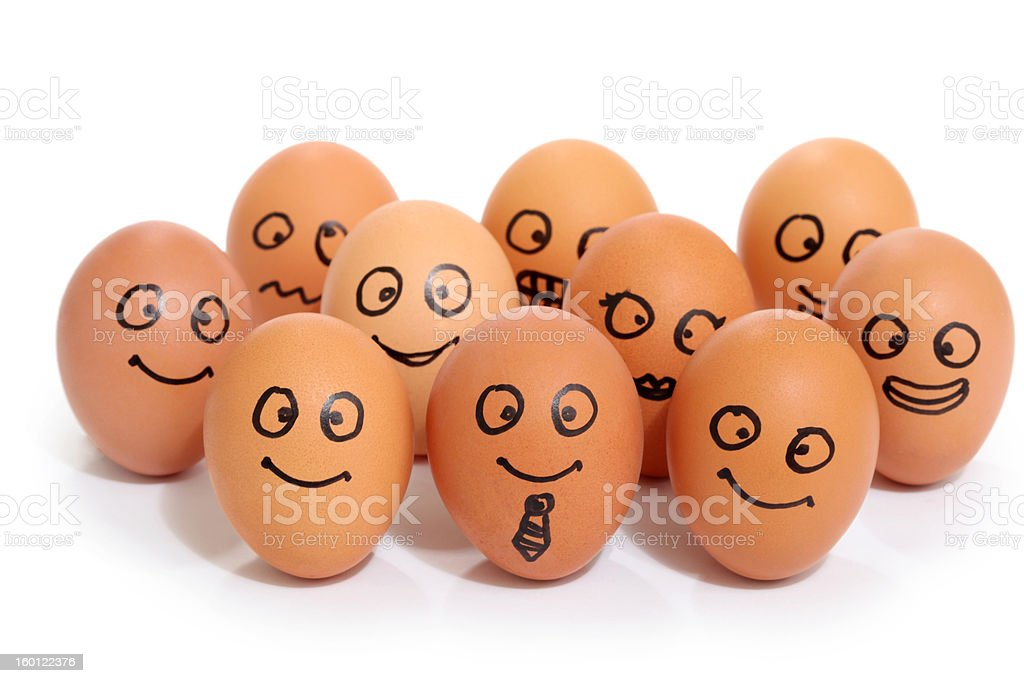 bussines eggs stock photo